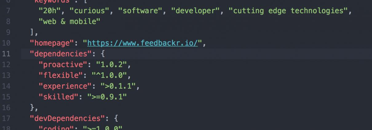 Software Developer 20h